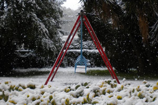 Neve #1