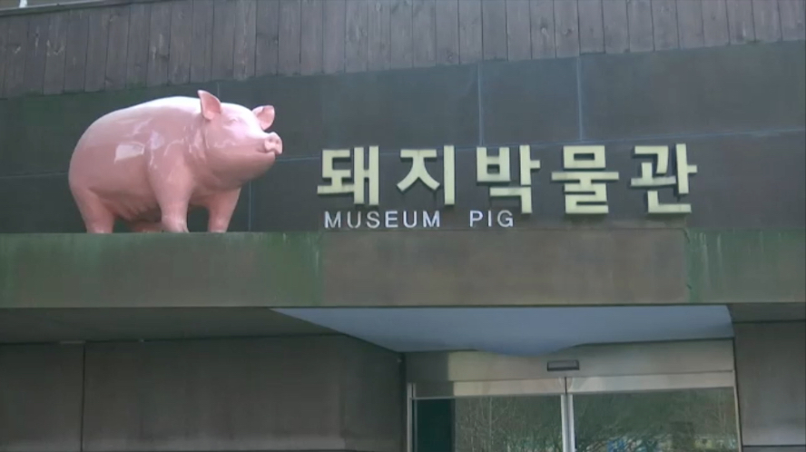 museo del maiale